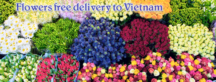 Vietnam flowers shop